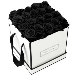 Infinity Collection Black Beauty Large white - square