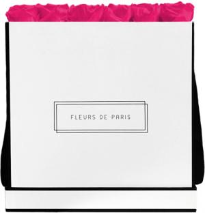 Infinity Collection Hot Pink Luxe white - square