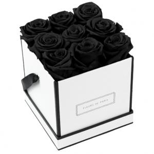 Infinity Collection Black Beauty Medium white - square
