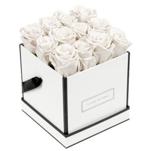 Infinity Collection Ivory Medium white - square