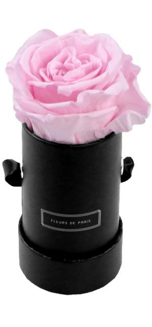 Infinity Collection Bridal Pink Mini black - round