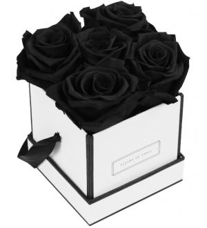 Infinity Collection Black Beauty Small white - square