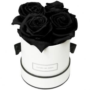 Infinity Collection Black Beauty Small white - round