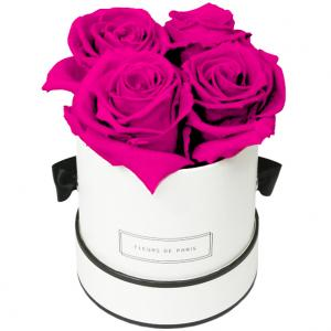 Infinity Collection Hot Pink Small white - round